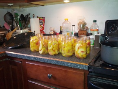 Step 5: Put in jars