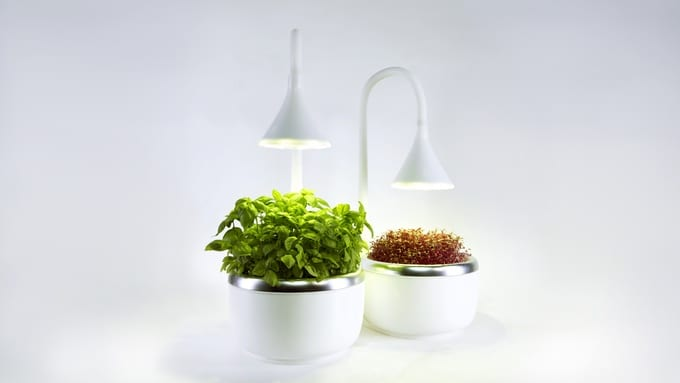 sproutsio kickstarter