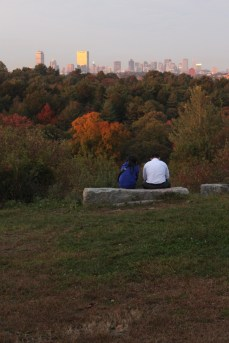 Arnold Arboretum: a couple enjoying the view of Boston at sunset