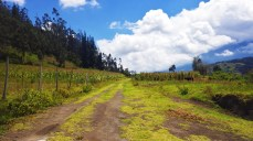 Rural Ecuador, when the sun came out. [Such open space! So colors! Wow.] This was taken just before we scaled the mountain for Carnivale.