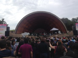 Hatch Shell!