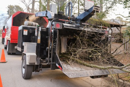 Wood chipping: Blazer Tree Services, Richmond VA area