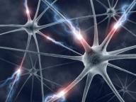 Neural_network_rotator