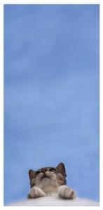 Big_Blue_Sky_by_RozeChan