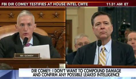 Trey Gowdy Reminds Comey that Obama Officials Leaking Against Trump Face up to 10 Years in Prison (VIDEO)