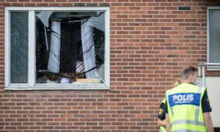 Only 14 Per Cent of 'Everyday Crimes' Solved in Sweden