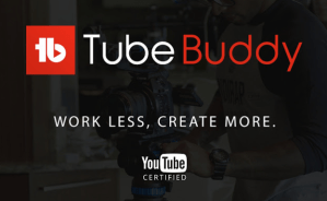 Tube Buddy Logo for YouTube Search