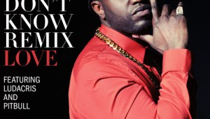 New Music: Rico Love feat. Ludacris & Pitball – They Don't Know (Dance Remix)