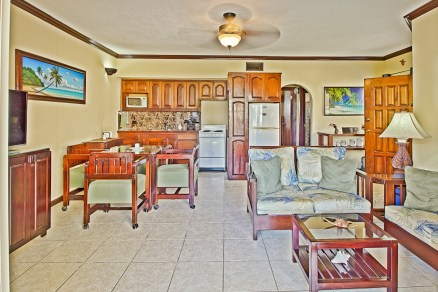 RPV 4A Living Dining Kitchen Area