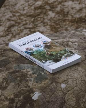 Bleausard_topo_escalade_fontainebleau