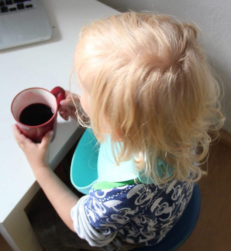 Zuckerfreien Holunderbeersaft selber machen
