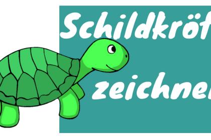 Schildkröte zeichnen lernen