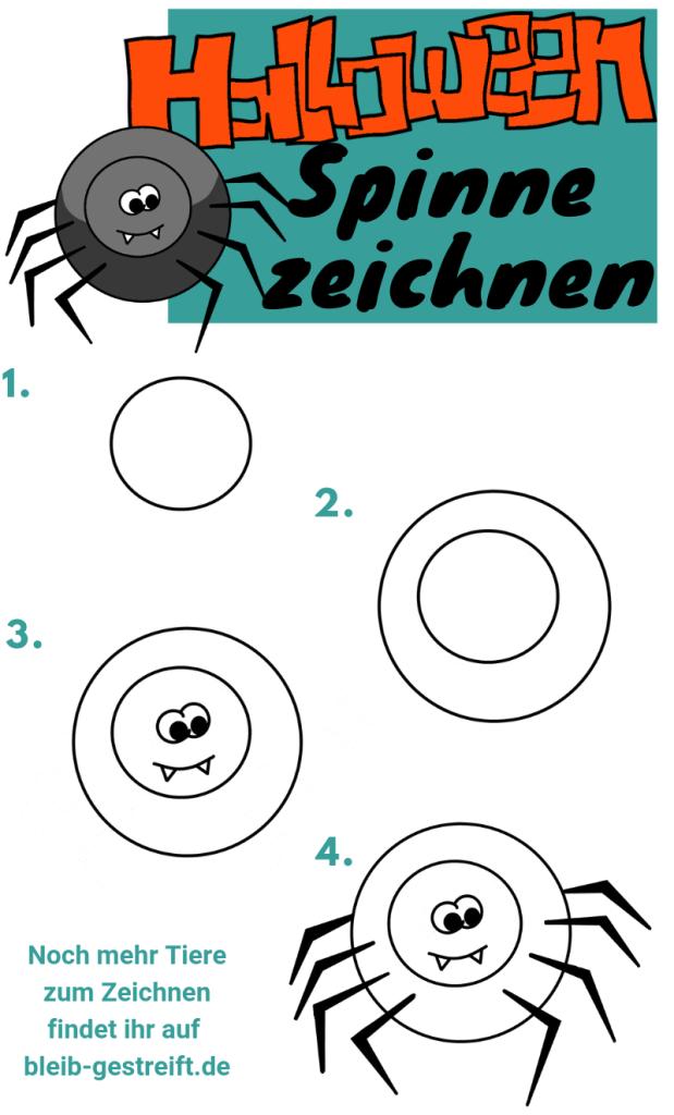 Spinne zeichnen für Kinder