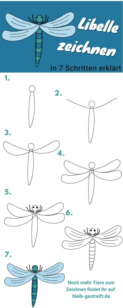 Libelle zeichnen lernen