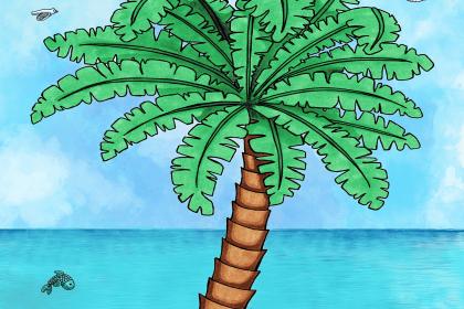 Palme zeichnen