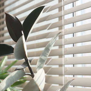 Warranties with Blended Blinds of Westminster Colorado