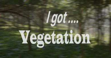 I Got Vegetation Addon