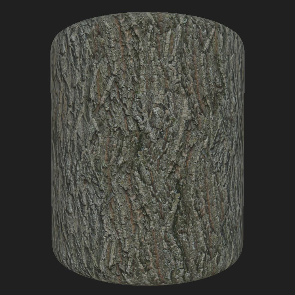 Bark_Maple_preview_cyl_1