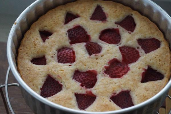 baking eggless cakes recipes, eggless baking recipes, easy cake recipes