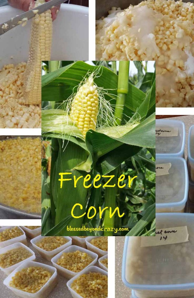 Home to make FREEZER CORN