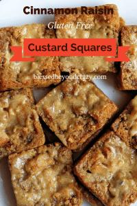 Cinnamon Raisin Custard Squares