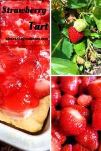 Strawberry Tart 1