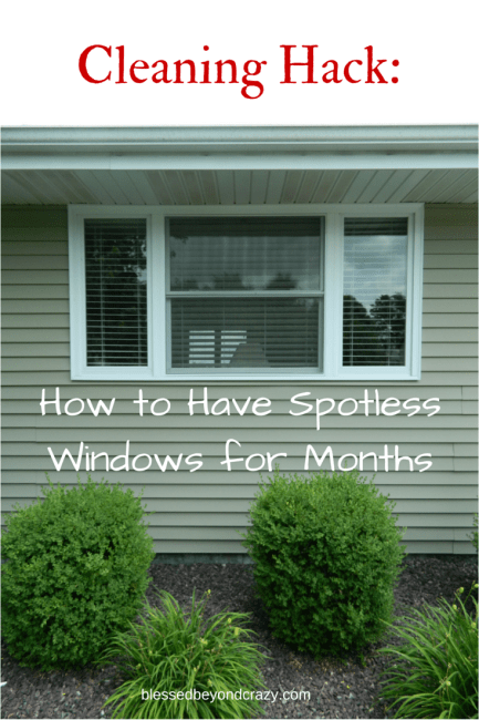 spotless windows