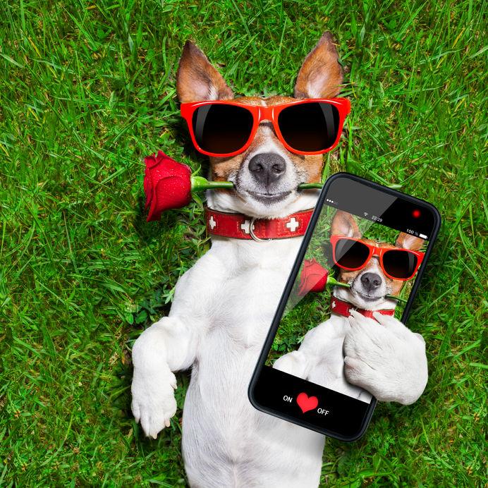 Valentine's Day Ideas 3