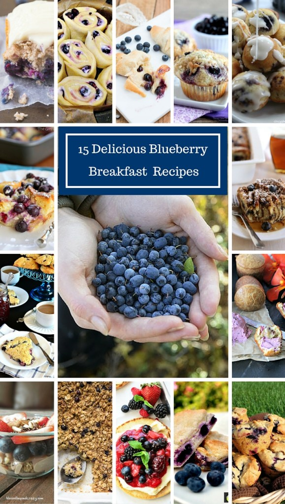 15 Blueberry Breakfast Recipes