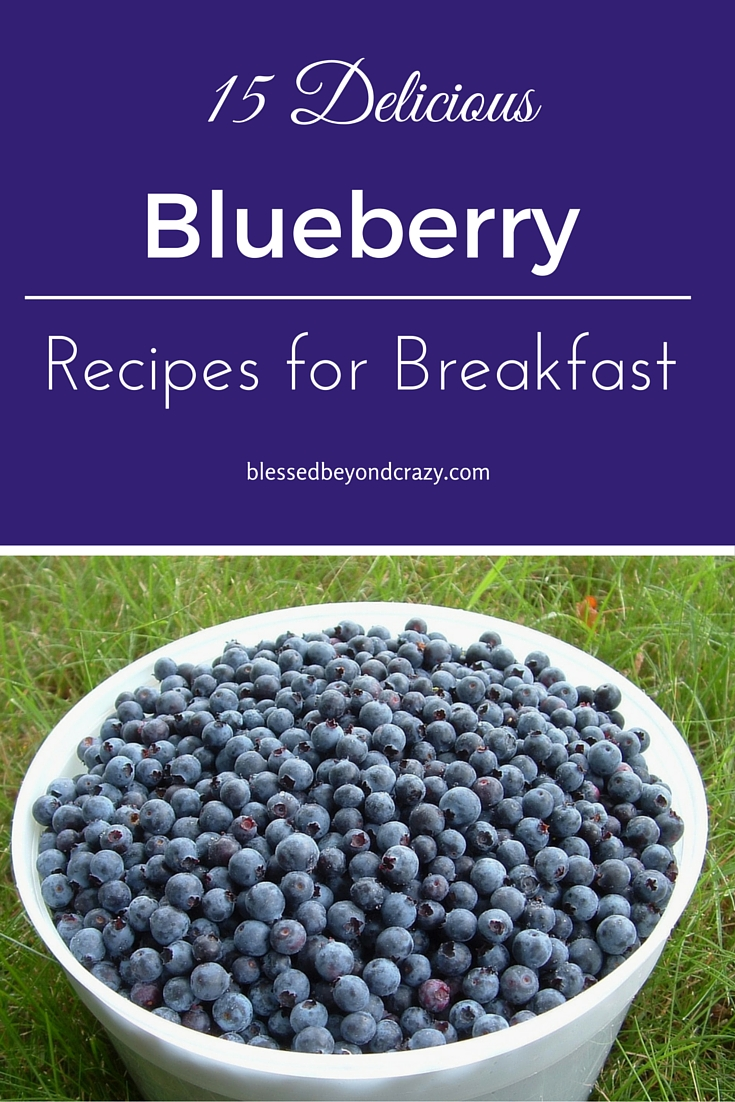 Blueberry Breakfast Recipes 3