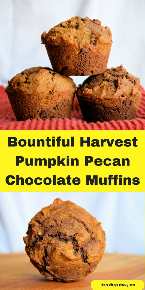 muffins pumpkin chocolate chip muffins pumpkin nut muffins pumpkin ...