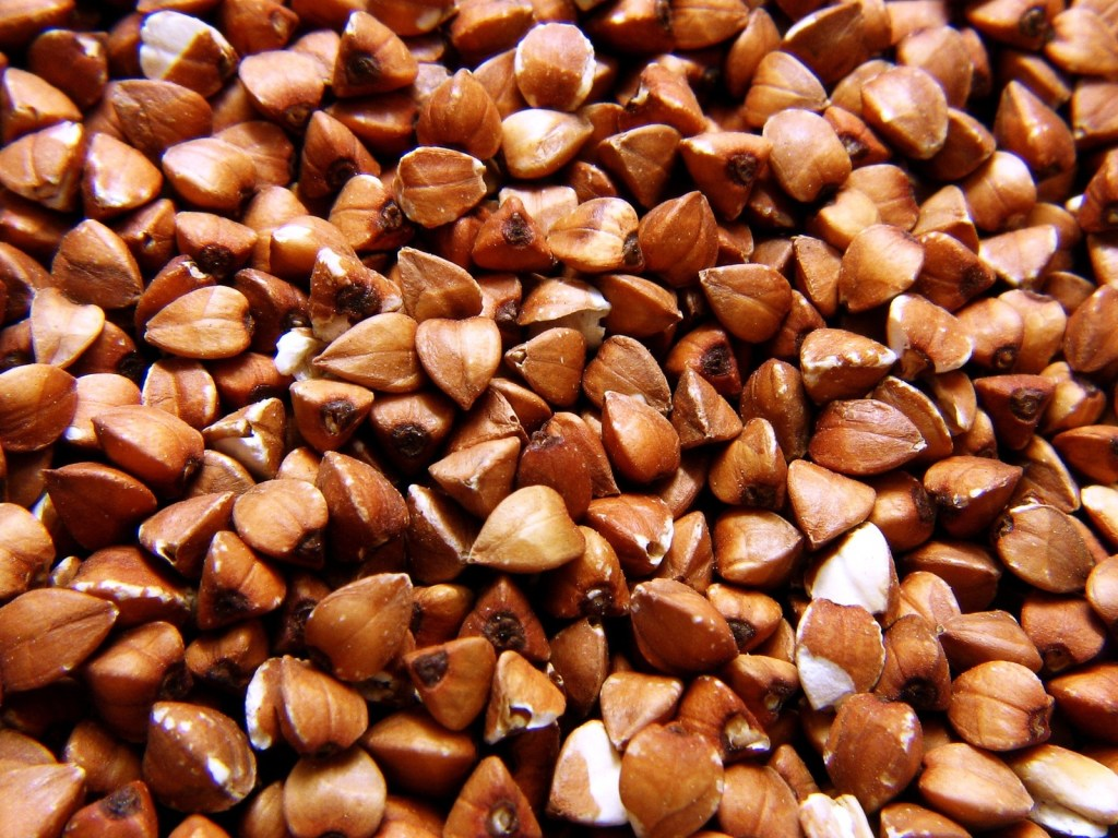 Close up of buckwheat groats
