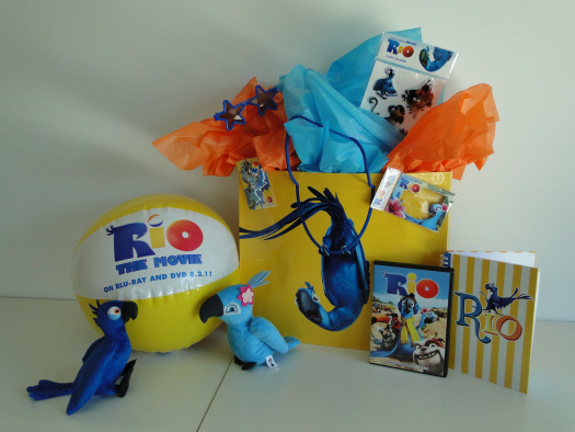 Rio Friendship Bag with DVD