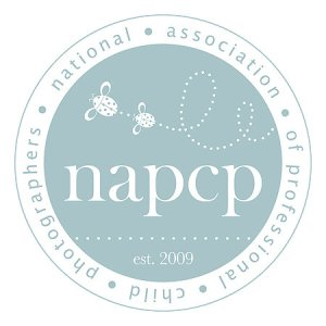 NAPCP Photography Tips & a GlVEAWAY! {Ends 11/9}