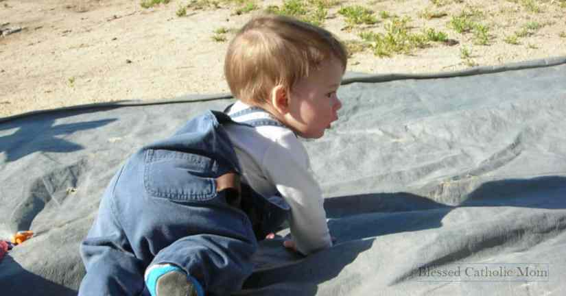 Keep track of kids' milestones. Image of a toddler boy crawling on tarp outside.