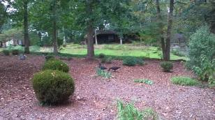 more-front-yard-1