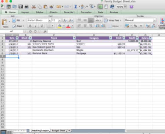 excel document check register
