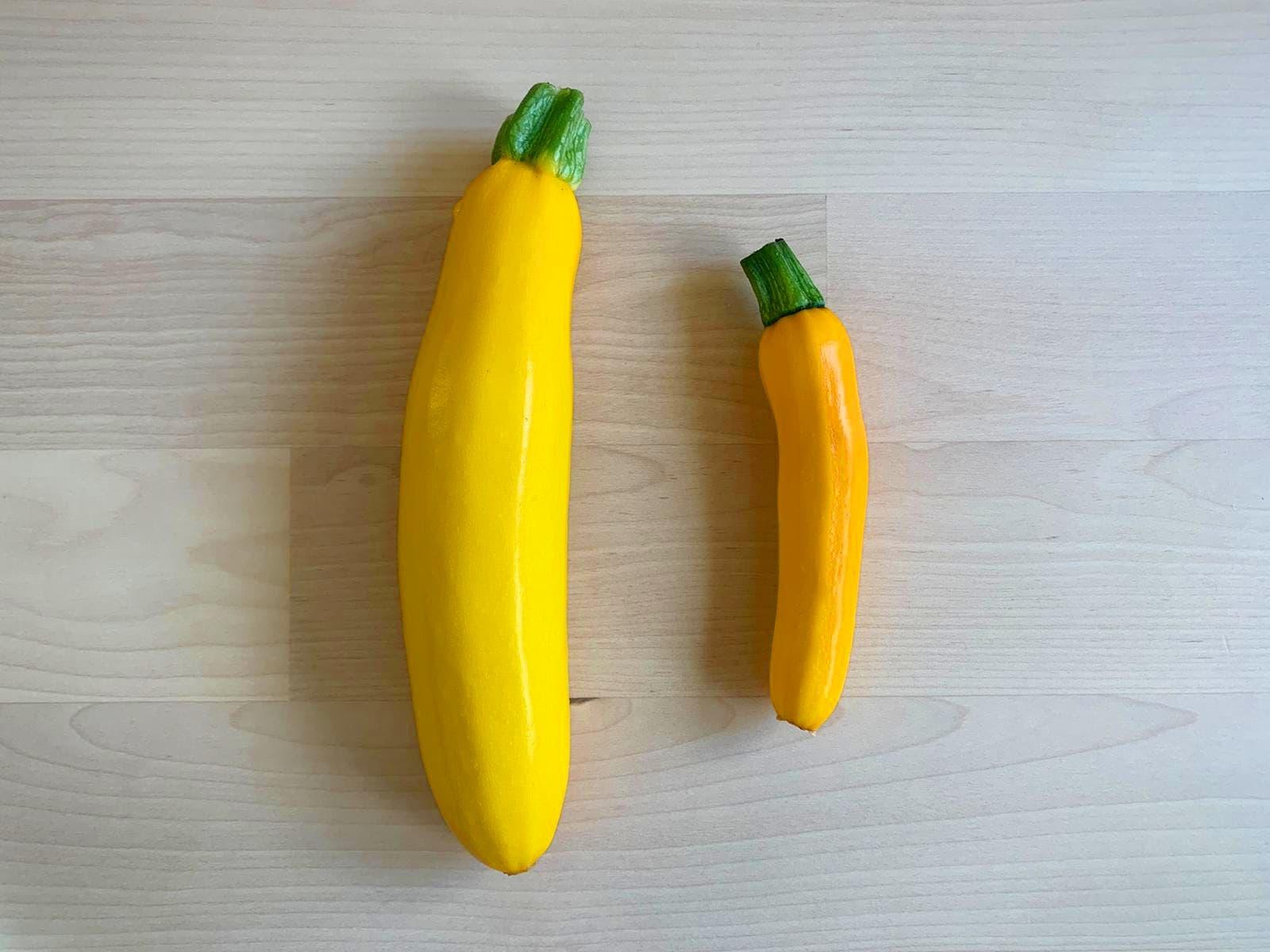 小空間也可以種黃色夏季南瓜/櫛(節)瓜|Growing yellow summer squash in small spaces – 10387 km