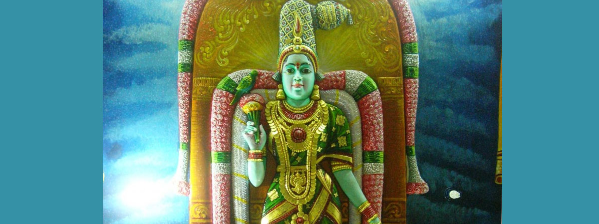 Image result for madurai meenakshi amman pictures