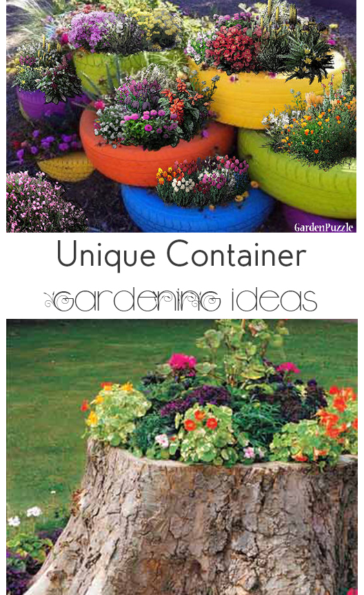 10 Container Gardening Ideas