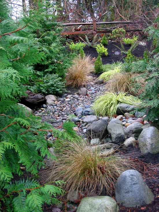 beautiful dry creek beds page