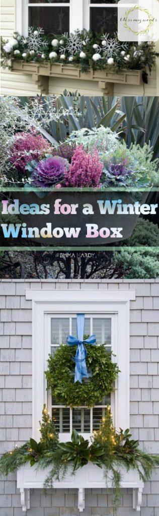 Ideas for a Winter Window Box