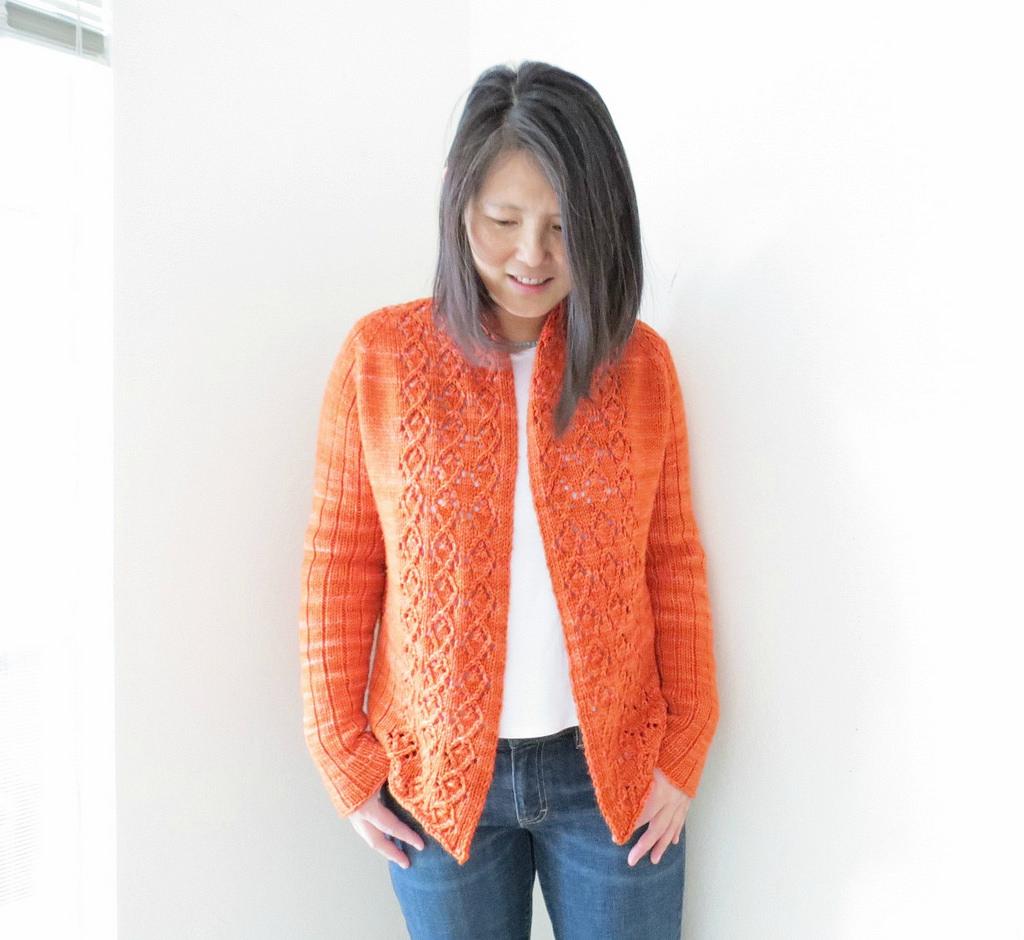 02a1007e112b Modele Tricot Pull Coton Femme Gratuit Espaceflirey
