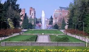 My Alma Mater. University of Washington.