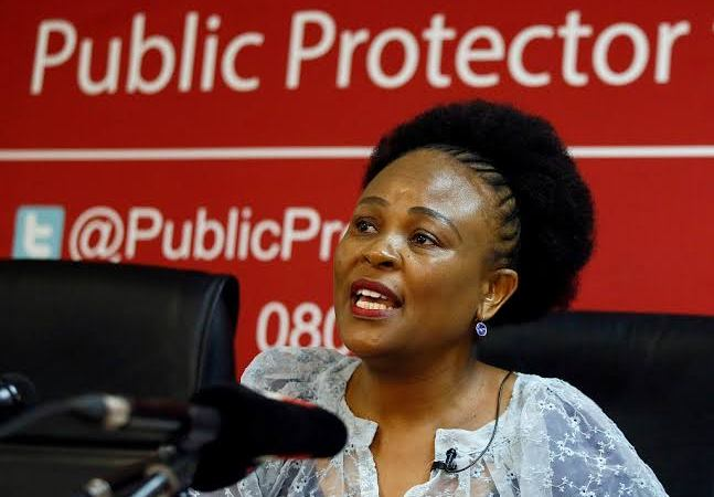 The Hawks must leave the Public Protector alone