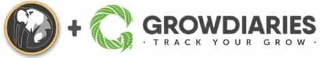 GDP zur Grow Diaries