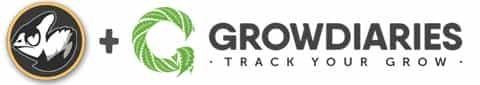 Green Crack on Grow Diaries