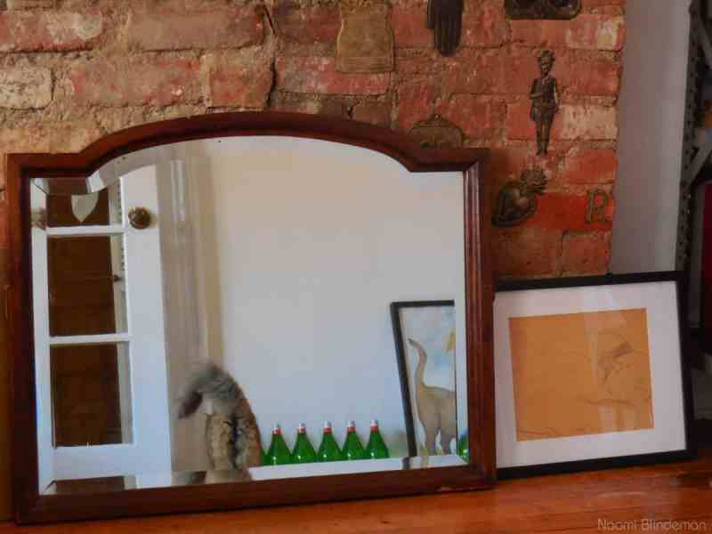 Photo of a reflection in a mirror of a cat with a curly tail, 7 green bottles, a painting of a cat with a curly tail and, next to the mirror, a drawing of a sleeping cat.