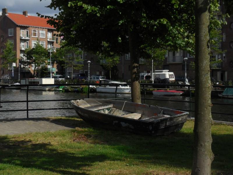 boot onder boom bos en lommerplantsoen