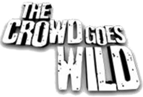 crowd-goes-wild_295
